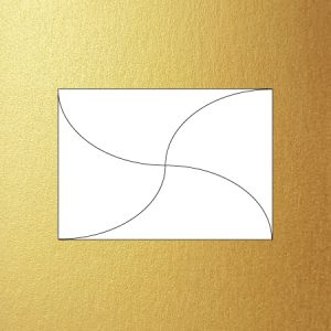 Metallic C6 butterfly envelope