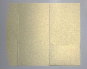Ivory metallic DLE pocketfold envelope